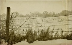 Rural Winter (12Jeepgirl~Never look back...) Tags: winter texture sepia rural photoshop fence wire nikon midwest farm sigma iowa adobe distillery lightroom d300 cs4 ankeny lesbrumes imagofabulae