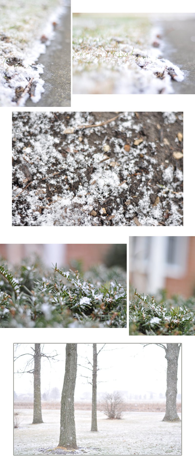 blog collage snow