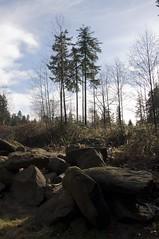03 DSC_0225 - Landscape Pick 03