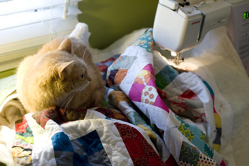 my quilting assistant