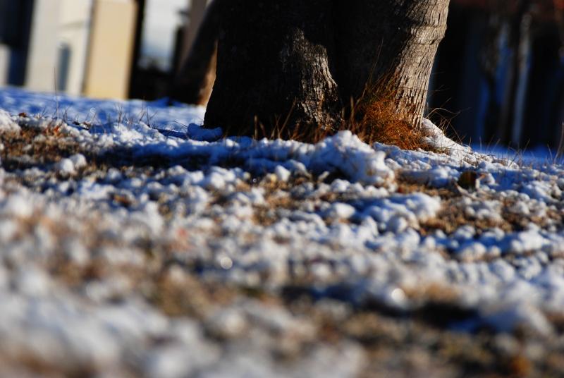 snowonground