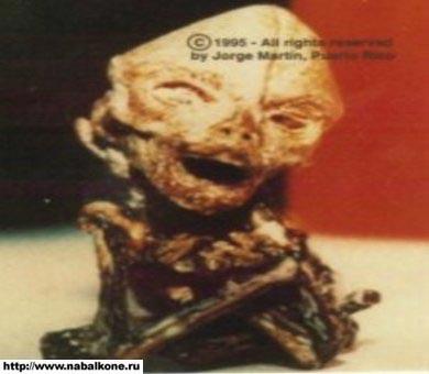 alien-foto-4