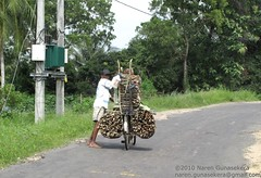 Firewood transport