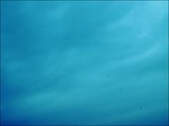 day 75: clean me (Pharmacist's Daughter) Tags: blue sky rain weather dirt badweather sensor kia nebo senzor coludy plavo oblano 365project olympuse510 neistoa