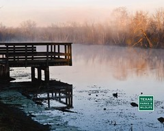 Brazos Bend State Park (Texas Parks and Wildlife) Tags: river birdwatching brazosbendstatepark birdphotography floodplains brazosriver freshwatermarshes brazosriverfloodplainsfloodplains observationplatforms