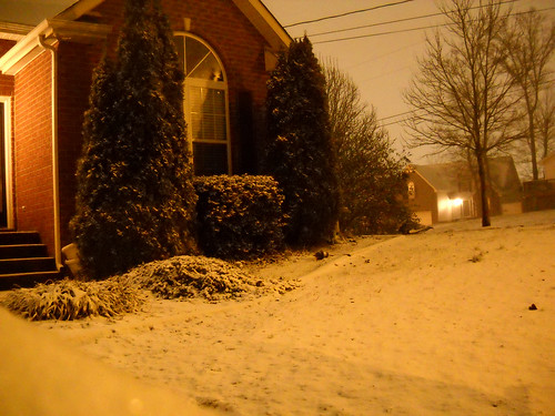 Snow moved in the night of Valentines Day, making my city a winter wonderland once again.