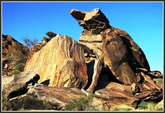 Andreas Canyon, Giant Boulders, Geology, Palm Springs Hikes (moonjazz) Tags: california travel dog southwest beauty monster rock stone giant photography desert earth palmsprings boulder hike huge geology senic earthscience andreascanyon