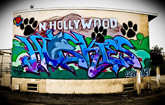 North Hollywood Huskies (Ableleeskies) Tags: school graffiti los high montana angeles north huskies hollywood frame letter characters seventh piece dtk nhhs tsl