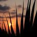 Ao Phrao Sunset