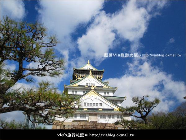 【via關西冬遊記】大阪城天守閣!冬季限定:梅園梅花盛開29