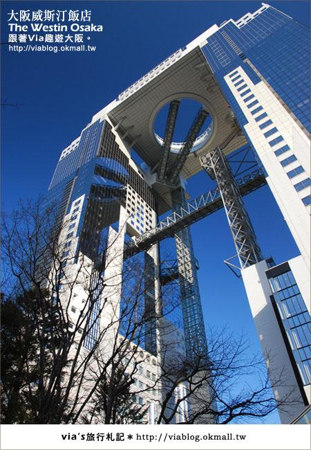 【via關西冬遊記】大阪住宿推薦~The Westin Osake大阪威斯汀飯店7