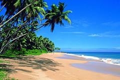 Beachscape - Southern Coast, Sri Lanka