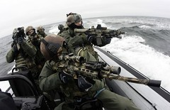 Polish Special Forces (World Armies) Tags: polish special forces