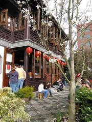Portland's Chinese Garden - Spring