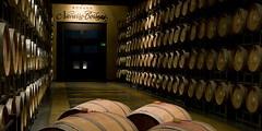 Optimismo en el  sector vitivinícola para este año