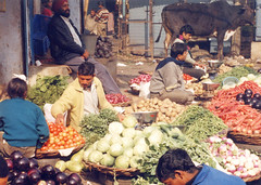 Vegetable Market, Paharganj, Delhi, India (east med wanderer) Tags: india vegetables market delhi february2003 paharganj theindiatree