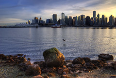 Stanley Park Skyline (Brandon Godfrey) Tags: vancouver stanleypark britishcolumbia bc skyline buildings cityscape harbourcentre shawtower fairmontpacificrim canadaplace coalharbour metro city beach heron water rocks light clouds bir