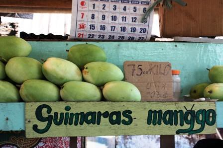 Guimaras and Her Famous Mangoes