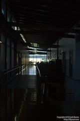 20100309_MG_8490Through these darkened halls...