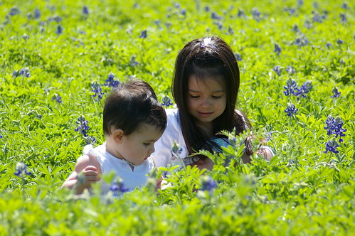 My girls in the bluebonnets