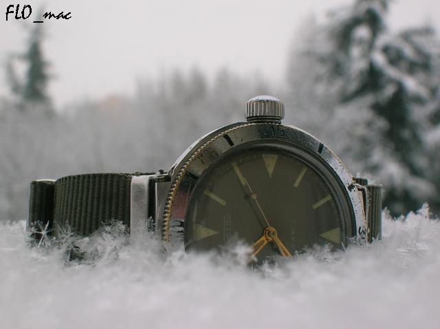 Feu de vos Vostok Amphibia 4445572710_03074f648b_o