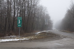 The way to Maple Tree Inn (annburlingham) Tags: trees mist ny newyork sign fog rural maple woods syrup roads angelica alleganycounty cartwrights mapletreeinn shorttract