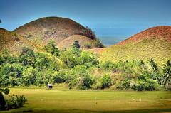 Bohol-73 (highlights.photo) Tags: people nature landscape asia philippines bohol filipino pinay filipina pinoy visayas filipiniana panglao tagbilaran ubay