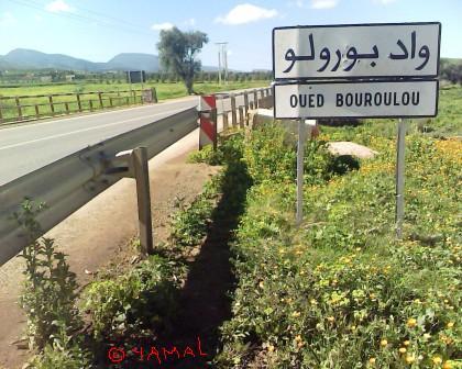 Oued Bouroulou Ain Reggada واد بورولو عين الرقادة