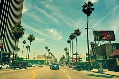 DSC_5729m (UbiMaXx) Tags: california road street urban usa green car la los interesting nikon angeles palm maxx d700 ubimaxx