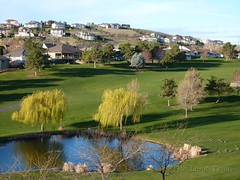 Canyon Lakes Kennewick Washington Golf Course Homes