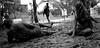 DSC_0966 (Corey Cordwell) Tags: feet rain dance dancing mud trampoline rave psychedelic trance stomping doof