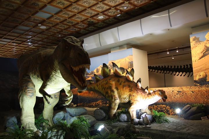 中正廟恐龍展000037