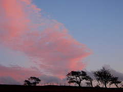 Pink skies (Lune Rambler) Tags: pink blue trees sunset sky clouds fence evening skies horizon bluesky hillside pinksky pinkclouds lunevalley platinumheartaward theperfectphotographer oltusfotos platinumbestshot lunerambler mygearandme mygearandmepremium mygearandmebronze mygearandmesilver mygearandmegold mygearandmeplatinum mygearandmediamond