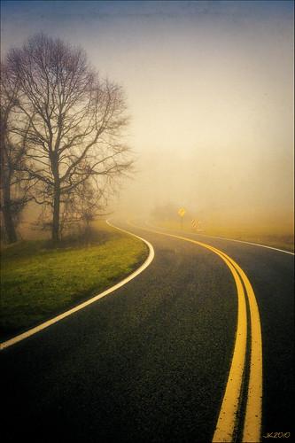 Summer Fog (by joey kennedy)