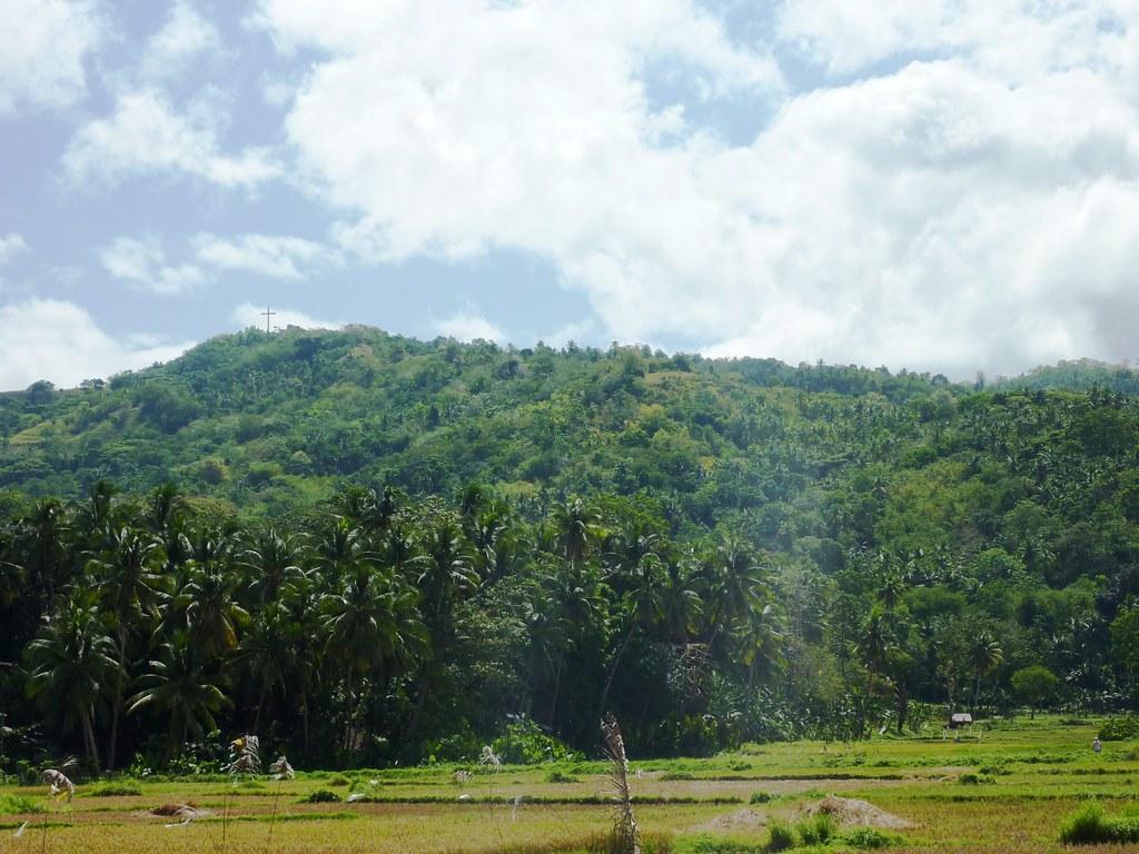 Bohol-Talibon-Chocolate Hills (11)