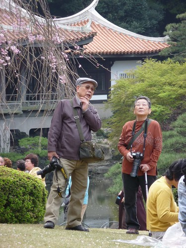 a senior photographer couple at Shinjuku Gyoen