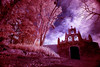 Old Chapel (Color Infrared Panorama) (-william) Tags: trees sky church mexico yucatan infrared colorinfrared explored d700 20mm35 haciendachichenitza f64g28r1win f64g28champ