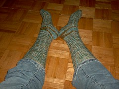 Lupine Meadow Socks - Complete