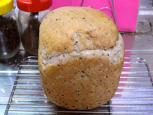 ホームベーカリーで2010年4月22日に作ったパン