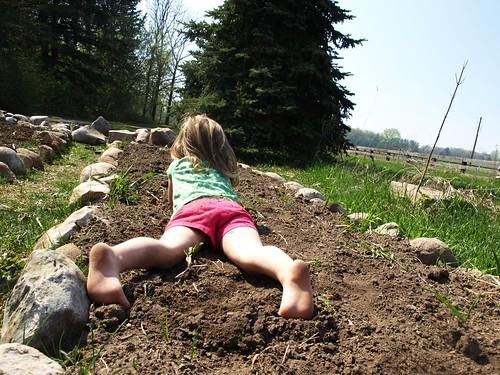 planting 014