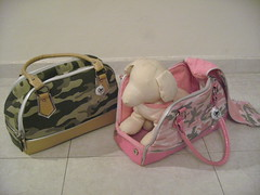 dog pet carrier
