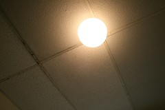 office ceiling tile in the bathroom (alicia lynette) Tags: moving before wtf badideas wbell