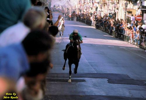 corsa di cavalli (bagheria)
