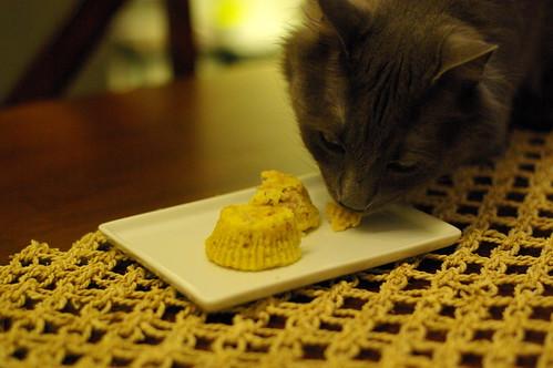 tom ate cake
