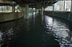 (Nam2@7676) Tags: film japan 35mm river shinjuku dof pentax bokeh scan mc m42  epson flektogon  mz3 nam2  carlzeissjena 3524 silverfast 7676 justpentax gtx970 yasunarinakamura  carlzeissjenamcflektogon35mmf24 nam27676