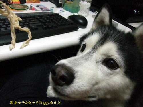 2010-04-13-003