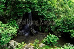 30065268 (wolfgangkaehler) Tags: fountain japan garden asian temple japanesegarden waterfall kyoto asia buddhist religion buddhism bamboo kinkakuji kyotojapan secluded kinkakujitemple religioustemple