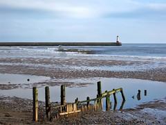 Berwick Harbour Lighthouse (barronr) Tags: wood england lighthouse northumbria northsea poles beech berwickupontweed spittal vftw