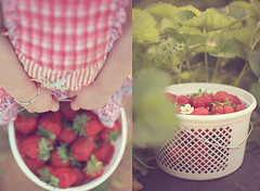 Strawberry Jam (bootsieking) Tags: