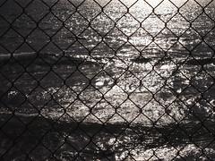 fence (rcferraris) Tags: sea bw white black beach pen ed olympus ep2 13556 1442mm mzuiko